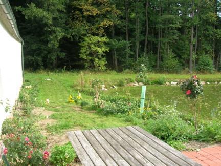 Terrasse und neues Rosenbeet