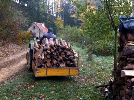 Wie immer: Holzarbeit