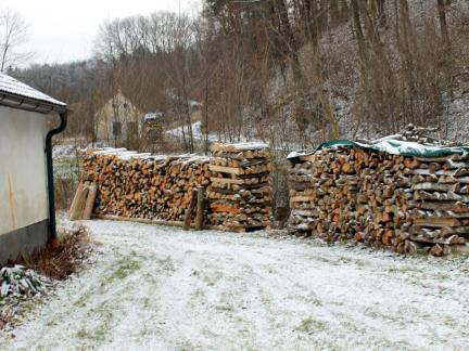 Jänner = Holzarbeit!