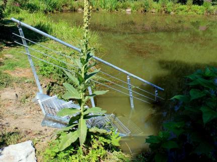 Juli 13: eine neue Stiege in den Teich.