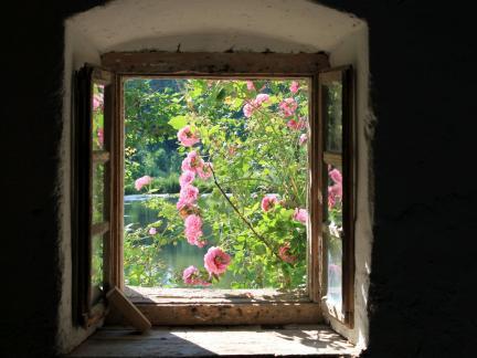Fenster des zukünftigen Hofladens