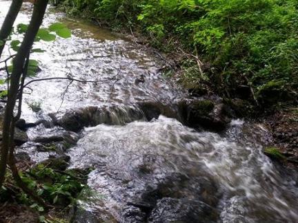 Sommer 16: schwül und jede Menge Wasser