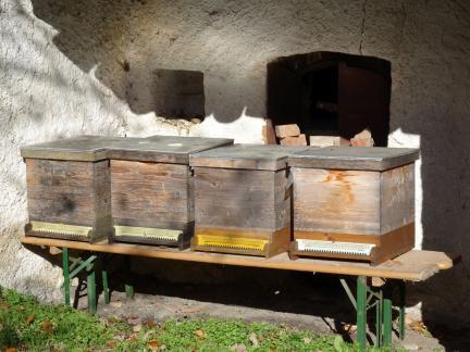 November 17: Bienen kommen ins Winterquartier