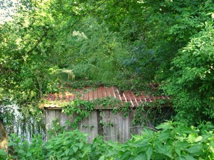 Mai: Das Dach der Fisdherhütte wird erneuert