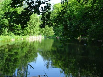Mai 18: der untere Teich ist wieder voll