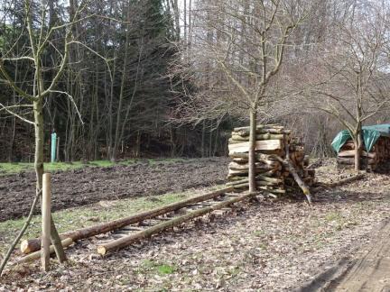 Leerräumen des Holzplatzes für die Überdachung des selbigen