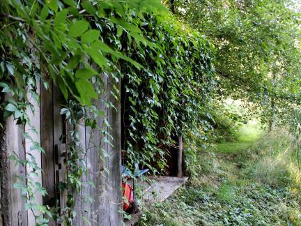 Fischerhütte 2014
