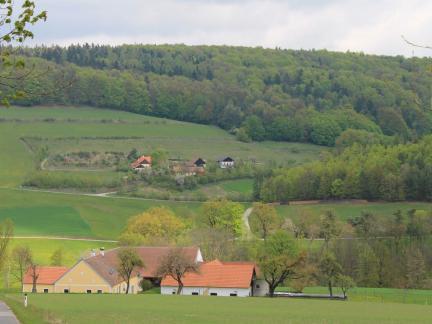 Blick übers Tal (April 14)