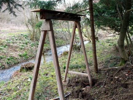 Märzanfang: Hier werden bald die Pilz-Stämme hängen.