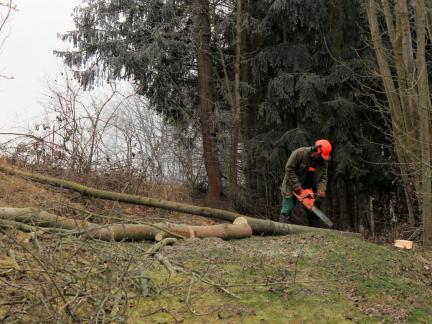 Zeit für Holzarbeit