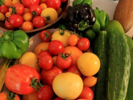 Tomatenfestival von Butolen :)