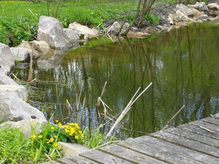 April 17, der Teich ist wieder voll