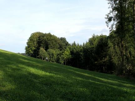 Landschaftslinien