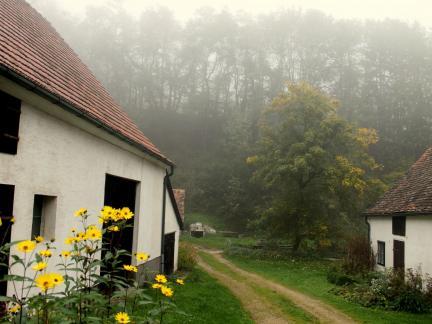 Erste Morgennebel (Oktober)