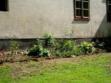 Küchengarten - Beginn vom Anpflanzen