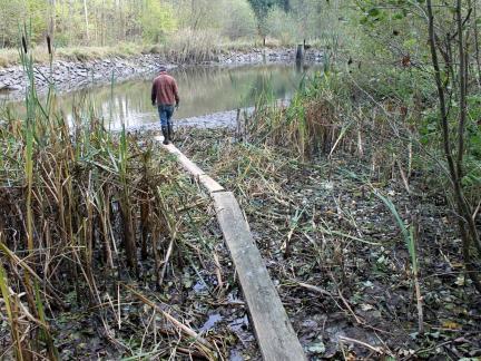Oktober 14: der untere Teich wird abgelassen