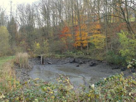 November 14, der leere untere Teich