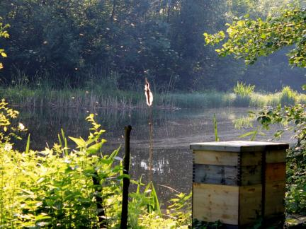 Unterer Teich mit Bienenstock, Juli 15